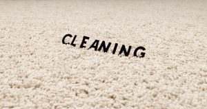 Carpet Cleaning Ahwatukee